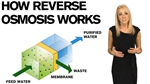 How Does Reverse Osmosis Work And What Does It Remove?